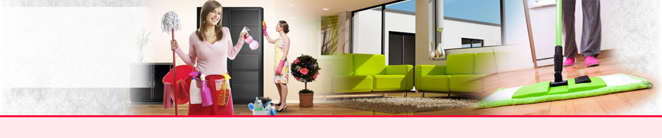 London Dmestic Cleaners - Cleaning Company